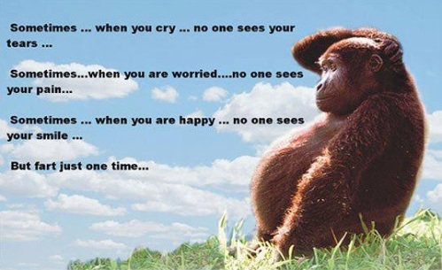 Sometimes when you cry