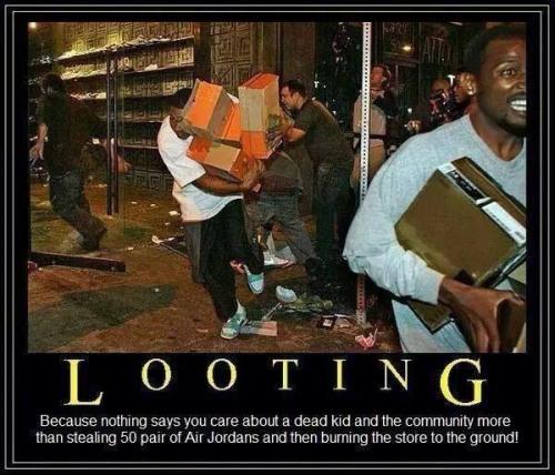 2014_11 Ferguson looters