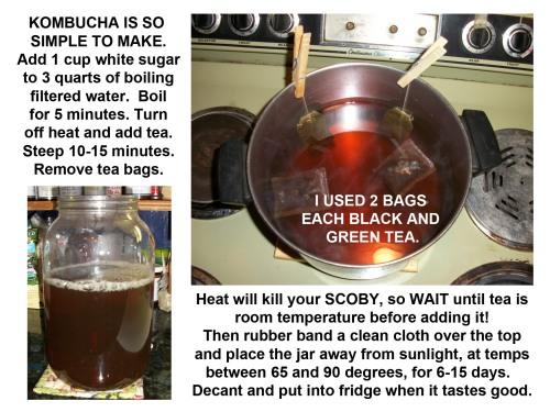 2014_11 24 Making BOOCH brew one