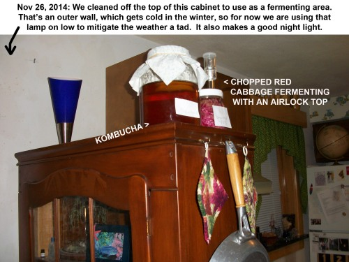 2014_11 24  Our fermenting station