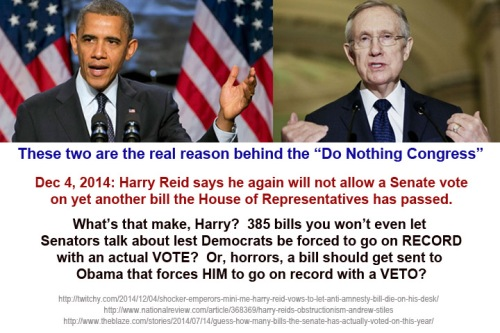 2014_12 04 Harry Reid ignores House again
