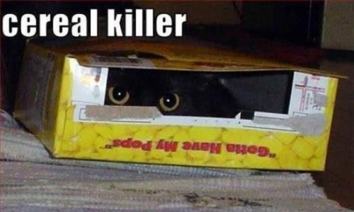 CAT cereal killer