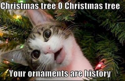 CAT CMAS ornaments are history