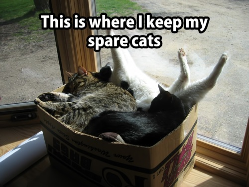 CATS storage for spares
