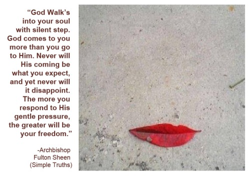 Leaf it to your imagination w Fulton Sheen quote