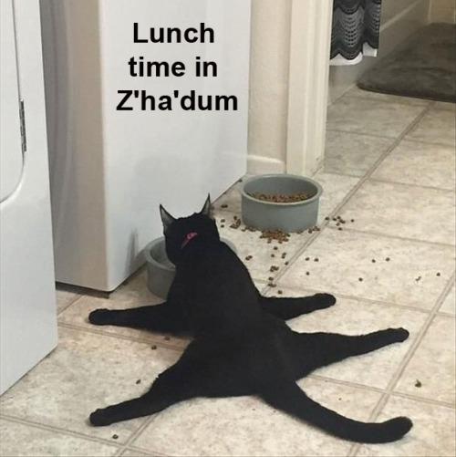 CAT Shadow Z'ha'dum
