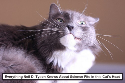 CAT Tyson science