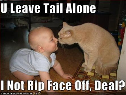 funny%20baby%20pictures%20with%20captions%20(26)