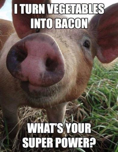 PIG superpower