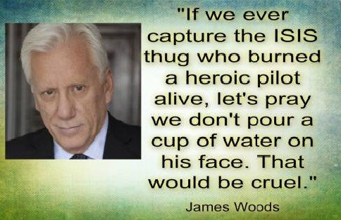 2015_02 James Woods on burned pilot