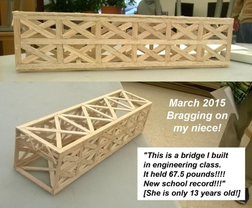 2015_03 26 Catherine built a bridge