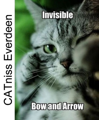 CAT niss Everdeen