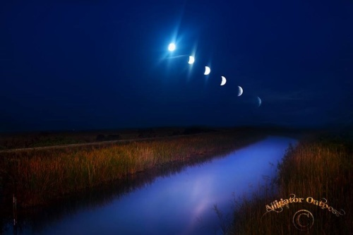 2015_04 04 Lunar eclipse time elapse from Everglades
