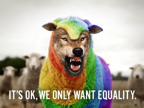 LGBT wolf