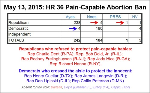 2015_05 13 HR 36 Pain Capable vote
