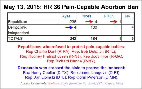 2015_05 13 HR 36 Pain Capable vote