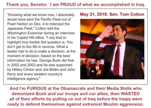 2015_05 21 Cotton on Iraq War