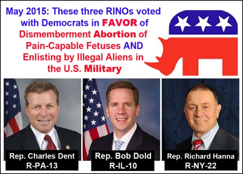 2015_05 RINOs in the House