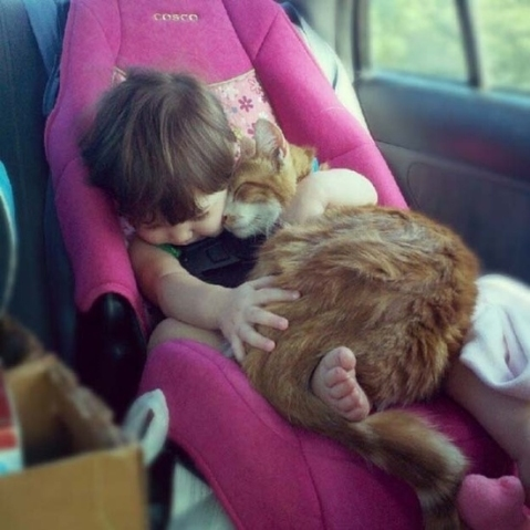 Cat-Curled-Up-with-Baby
