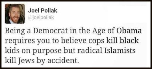Democrat in Age of Obama