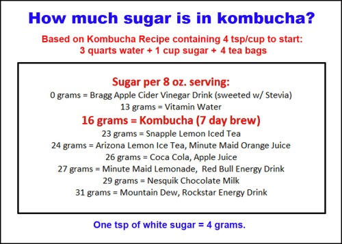 Kombucha - sugar content