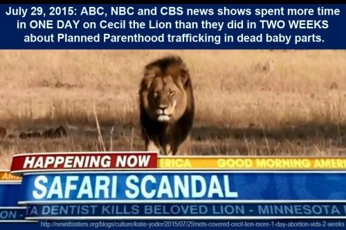 2015_07 29 MEDIA FAIL Cecil vs Dead Baby Parts