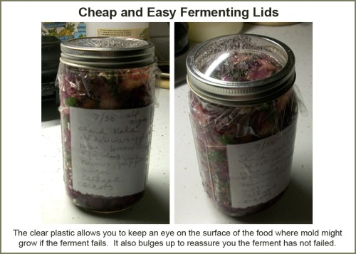 Cheap and easy fermenting lids