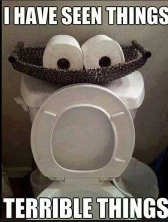 TOILET I have seen things