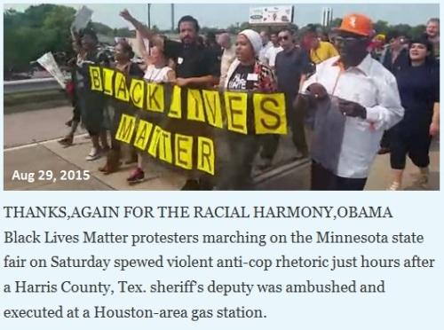 2015_08 29 Black Lives Matter - Pigs