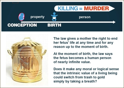 ABORTION trash to gold