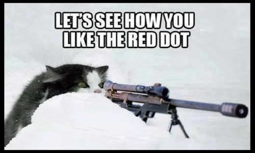 CAT Red dot