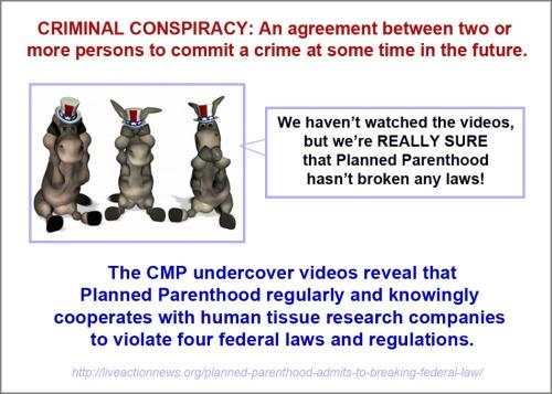 CRIMINAL CONSPIRACY and donkeys