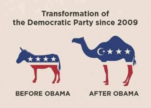 Democrat Party since Obama