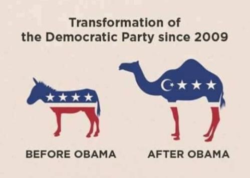 Democrat Party since Obama