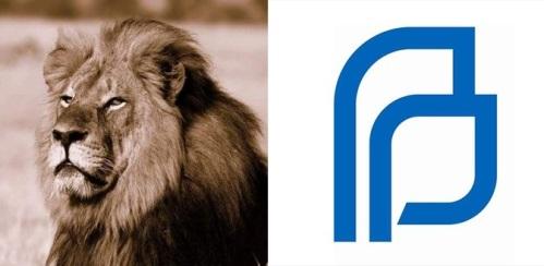Lion PP