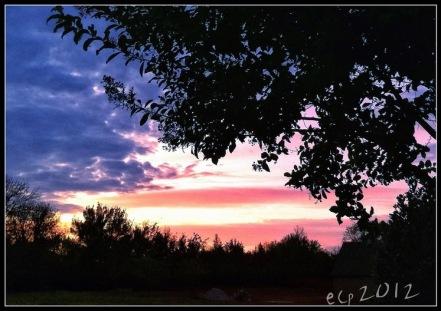 2011_09 10 flag sunset