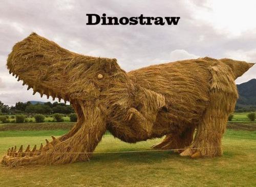 DINO straw