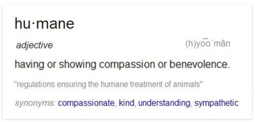 Humane definition