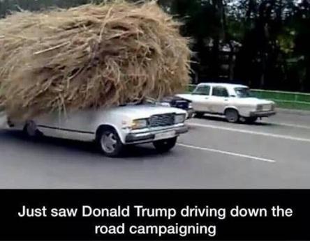 TRUMP car PN