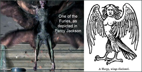 Fury Harpy