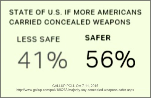 GALLUP conceal carry
