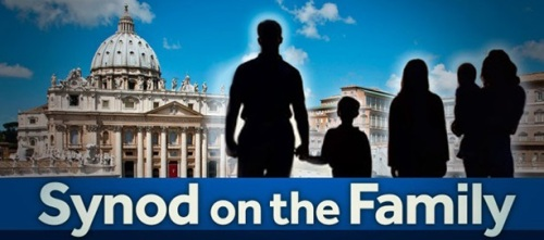Synod on the Family graphic