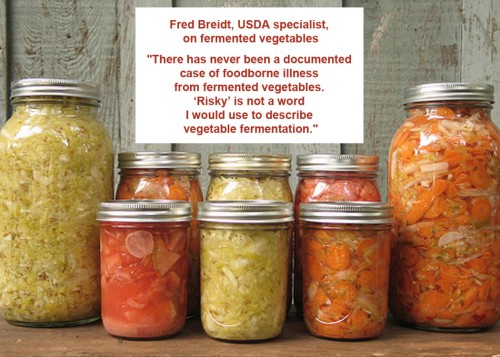 Fermented veg safety