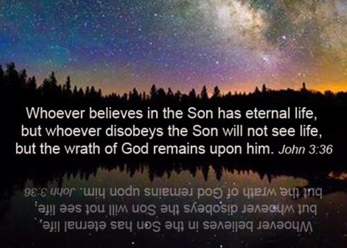John 3 36