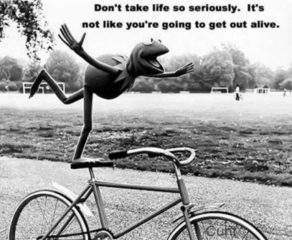 funny-Kermit-frog-life-serious1