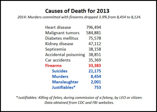 2013 Causes of Death