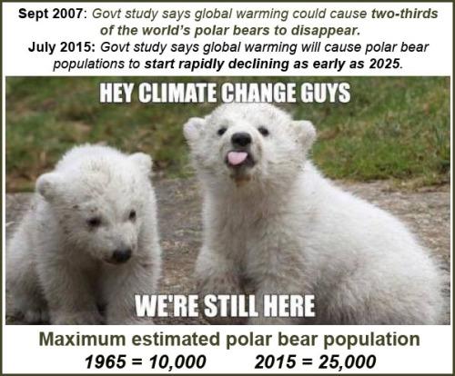 2016_01 01 Polar Bears