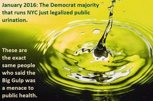 2016_01 NYC public pee