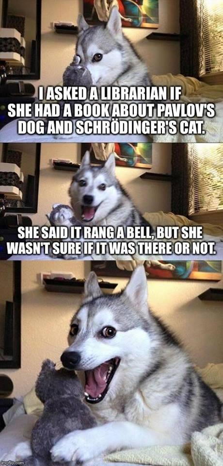 DOG nerd humor