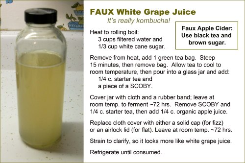 KOMBUCHA faux grape juice